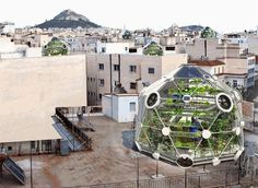 Rooftop fish farm and garden gardening-farming