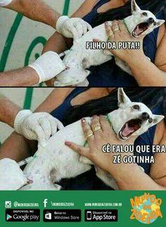 Cade o Zé gotinha!!!!