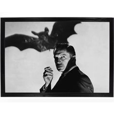 Vincent Price Bat Poster