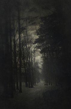 Untitled | Yaroslav Gerzhedovich
