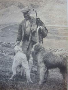 """Vaquero del Pirineo (Queralbs, Gerona 1921)  Pastor de 62 años, conocido como el """"Rei de Queralbs"""", es un vaquero que toda la vida ha hecho de pastor, al igual que sus padres. Durante muchos años trabajó como pastor para los carniceros de Barcelona apacentando el ganado en la zona de Sant Cugat y Rubí. http://aleph.csic.es/F?func=find-c&ccl_term=SYS%3D000113357&local_base=ARCHIVOS (IMF)"""
