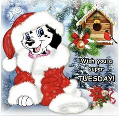 Good Morning sister and all,have a wonderful day, God bless xxx take care and keep safe❤❤❤❄⛄❄ Good Morning Winter, Good Morning Greetings, Good Morning Good Night, Christmas Morning, Christmas Movies, Christmas And New Year, Xmas, Merry Christmas, Tuesday Greetings
