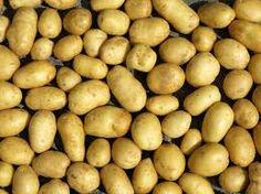 Kartoffel, die (-n)