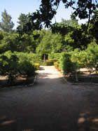 Lokrum garden