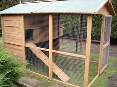 Outdoor rabbit run with hutch for Walter and his chicken friends in the summer.