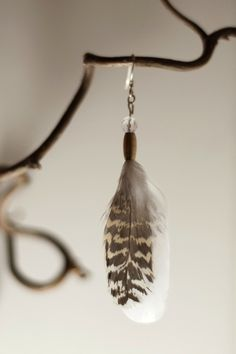 Earring with quartz, brass and grouse feathers from the north of Norway. www.malinpettersen.com Grouse, Norway, Feathers, Jewlery, My Arts, Quartz, Brass, Drop Earrings, Jewelry