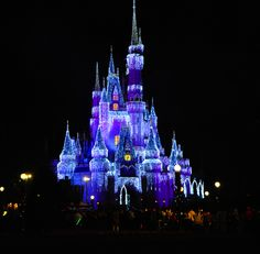 Magic Kingdom - Orlando - FL - U.S.A (NYE)