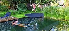 Sunken trampoline   TheWHOot