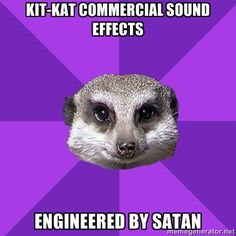 OMG!!  I TOTALLY AGREE! I have to mute these damn commercails!  Misophonia Meerkat.. I swear I have this! lol