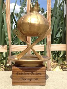Annual Vidalia Onion Festival, held in the spring every year in Vidalia, Georgia. Twelve Georgia chefs compete for this golden trophy in a showcase of the state's Official Vegetable. Oregon Living, Vidalia Onions, Confederate Flag, Georgia On My Mind, Peach, Vidalia Georgia, Spring, Chefs, Festivals
