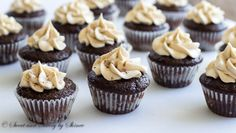 These mini Kahlua cupcakes are soaked with sweetened coffee liquor and topped with creamy Kahlua buttercream. Heaven in small bites!