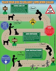 Dog Obedience Training Dog Training Hand Signals - A picture instructional guide - Dog tricks are a great way to take your dog training to the next level. Here are ten fun and easy tricks that you can train a dog to do. Training Your Puppy, Dog Training Tips, Agility Training, Training Classes, Training Academy, Training Pads, Training Videos, Potty Training, Puppy Training Schedule