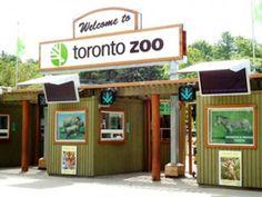 toronto zoo - Google Search
