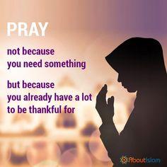 Say Alhamdulillah! Islamic Qoutes, Islamic Images, Alhamdulillah, Hadith, Ramadan Tips, Spiritual Counseling, Hussain Karbala, Feel Good Videos, Motivational