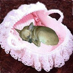 My Coco needs this if anyone wants to make it for her. Spoil your baby (your furry one!) this Valentine's Day!