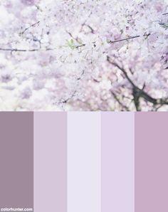 Spring Color Scheme