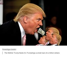 Hungry little drumpfs. #imgur