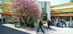L'Université de Neuchâtel décroche un pôle de recherche national dans le domaine des migrations doté de 17 millions
