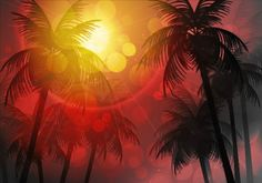 Sunlight with palm trees vector background 01 - https://gooloc.com/sunlight-with-palm-trees-vector-background-01/?utm_source=PN&utm_medium=gooloc77%40gmail.com&utm_campaign=SNAP%2Bfrom%2BGooLoc