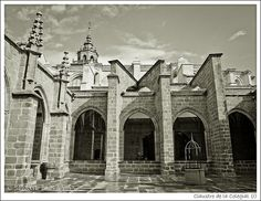 Claustro de la Colegial (I) by Jbenayas, via Flickr