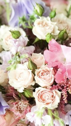 Wholesale Flowers And Supplies, Wholesale Flowers Online, Fresh Flowers, Wedding Flowers, Rose, Plants, Pink, Plant, Roses