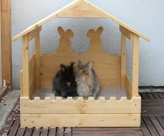 a burrowing place (sand box) for bunnies who like to dig