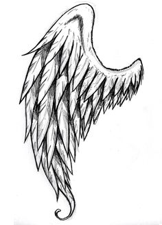 how to draw wings angel - Google Search