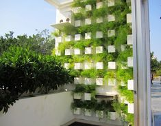 Green Balcony Idea Green Terrace Garden Interior / Green Balcony Id Interior Balcony, Balcony Design, Garden Design, Small Balcony Garden, Rooftop Garden, Balcony Ideas, Artificial Green Wall, Endless Summer Hydrangea, Green Terrace