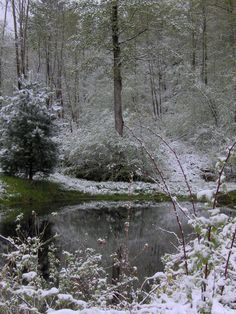 A different view of that May snowfall in 2010