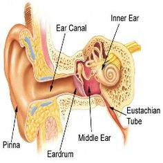 how to take care of an ear infection