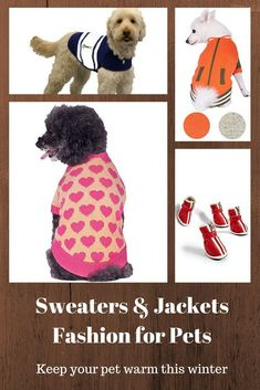 Your pet will look stylish while keeping warm with these great jackets and sweaters. Their little paws will stay protected with these adorable shoes.  Keep them warm this winter. leg warmers for dogs, snowsuits for large dogs, snowsuit for dogs, winter wear for dogs,  thunder vest for dogs,  winter care for dogs,  winter boots for dogs,  winter hats for dogs,  apparel for dogs,  apparel for small dogs,   apparels for dogs, running shoes for dogs.