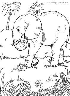 Elephant Jungle Scene From Coloring Pages