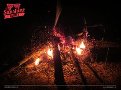 #Campfire at #night #halting @ forest