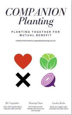 Companion Planting eBook