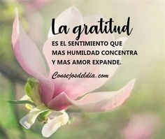 Spanish Inspirational Quotes, Spanish Quotes, Positive Inspiration, Daily Inspiration Quotes, Wisdom Quotes, Love Quotes, Bible Quotes Images, Be Present Quotes, Positive Phrases