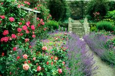 You don't need to own a cottage to create an elegant English-style garden. From adding an arbor to building a white picket fence, follow these tips for transforming your garden into a quaint escape.   - CountryLiving.com