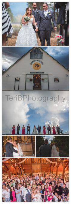 Corner Barn, Graeagle, California TeriB Photography Bride and Groom, Epic Bridal Party Destination Wedding, Pink Bridesmaids Dresses Dress