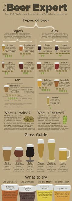 Beer Guide: Pretty good considering this is from MSU.