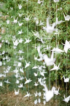 Paper cranes decorating the ceremony or reception site. Teach your bridal party how to make them and have some paper parties... trust me if you have good friends you will also have a great time and memories. Just don't forget to bring along the camera to document the fun!  Feel free to make me some of these ladies! ;) ;)