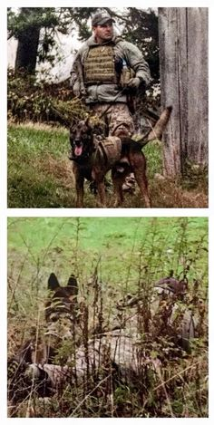Cairo the warrior dog and his handler, Loyd in Afghanistan,
