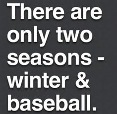 I'd change it slightly - my two seasons are HOCKEY and BASEBALL. ;)