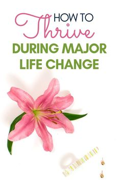 Are you looking for tips on how to handle major life change and transition? Check out this article filled with truths to help people work through transitions in life, work, relationships, moving, and more. Whether it's unexpected change or planned out dec Negative Thoughts, Positive Thoughts, Self Development, Personal Development, Changing Jobs, Life Changing, Lost My Job, How To Get Motivated, Life Coaching Tools