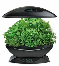 AeroGarden Classic 7-Pod with Gourmet Herb Seed Kit Indoor Growing System Plant