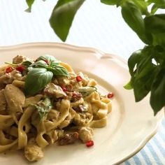 Videorecept: Báječné domácí těstoviny s pestem a kuřecím masem - Vaření.cz Pasta Salad, Pesto, Chicken, Ethnic Recipes, Crab Pasta Salad, Cubs