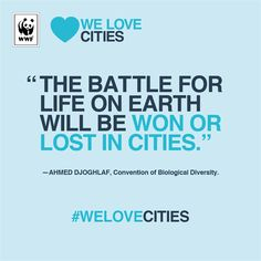 What's your favourite city?  Join the global celebration of the most lovable sustainable cities at www.welovecities.org, and vote for your favourite of the 47 shortlisted participants.    #WeLoveCities   (scheduled via http://www.tailwindapp.com?utm_source=pinterest&utm_medium=twpin&utm_content=post1079551&utm_campaign=scheduler_attribution)