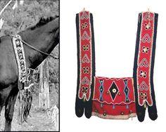 Nez Perce Horse Costumes   Found on scontent-b-ord.xx.fbcdn.net
