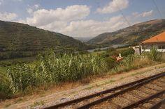 Yksi maailman upeimmista junareiteistä -Porto-Pinhão Railroad Tracks, Vineyard, Outdoor, Porto, Outdoors, Vine Yard, Vineyard Vines, Outdoor Games, The Great Outdoors