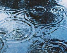 [F]水たまり。波紋がきれい。