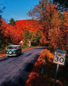 Places To Travel, Travel Destinations, Places To Go, Autumn Cozy, Autumn Fall, Autumn Leaves, Autumn Illustration, Autumn Scenery, Autumn Aesthetic