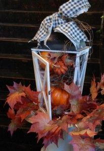 pumpkins in lantern or birdcage. Cute with the black and white.